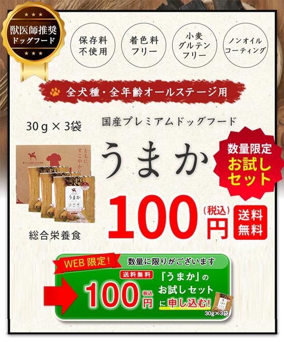 うまか100円サンプル